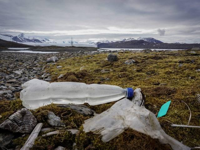 Ben Porter - Sail Against Plastic