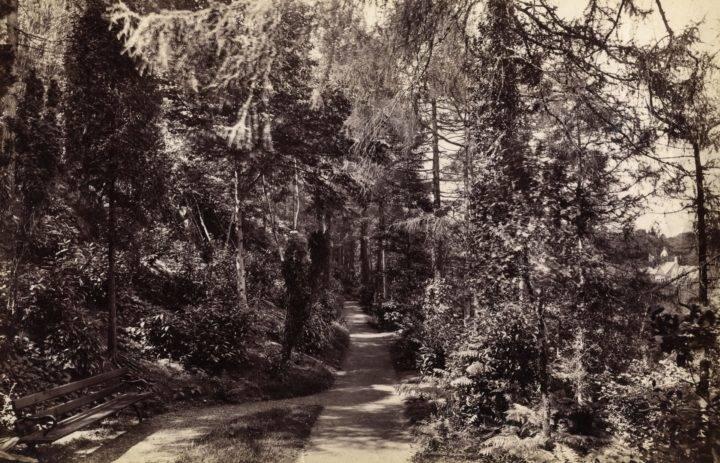 Winllan History
