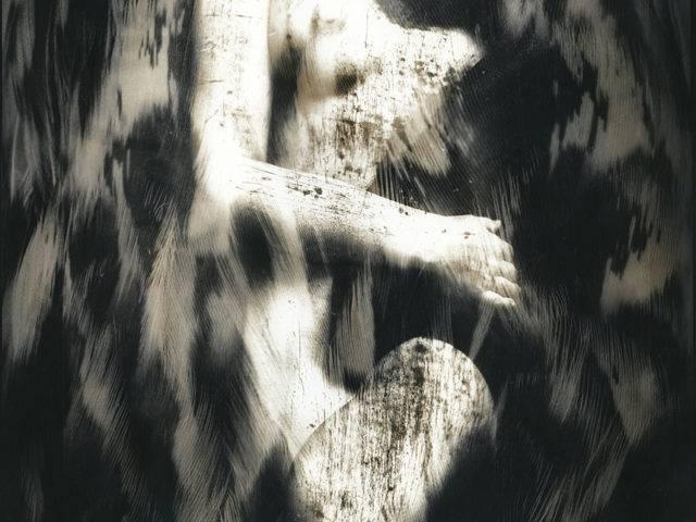 David Heke - The Transformation of Blodeuwedd