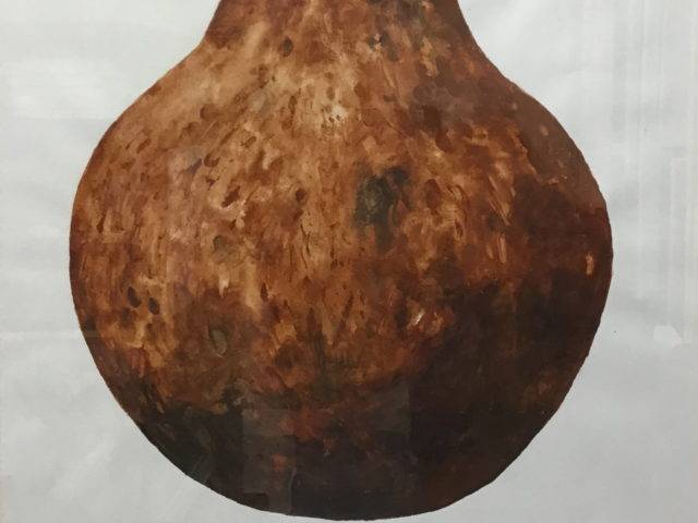 Howard Bowcott - Fire Pot Zimbabwe