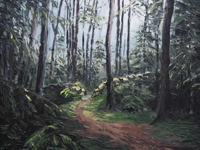Forest Walk, Tyn y Groes