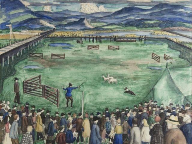 Porthmadog Sheepdog Trials