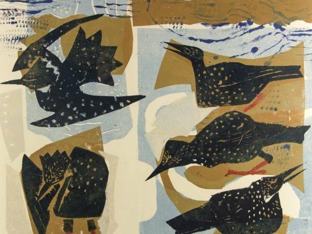 Starlings Bathing