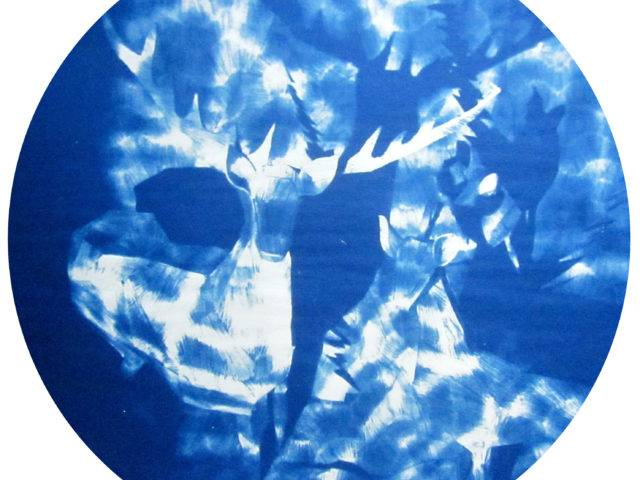 Lea Sautin - Deer