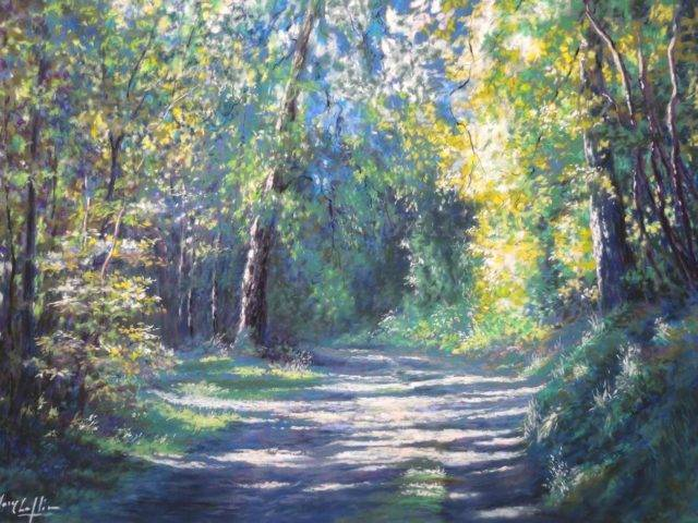 Walk in the woods no.3