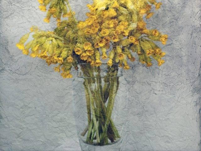 Pastoral Monument 14 - Primula Veris
