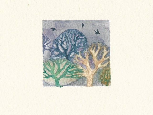 Ravens over trees