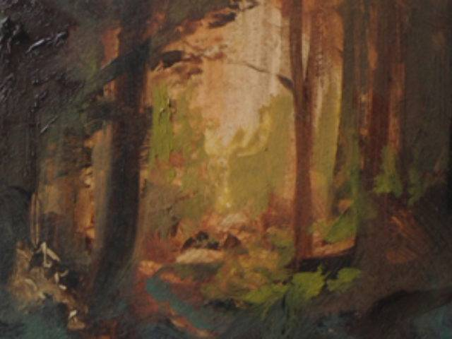 Stones in the woods